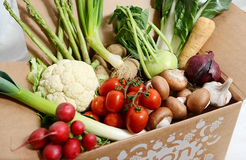 Bio Gemüse Box
